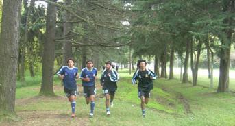 20101226202206-entrenamiento-fisico.jpg