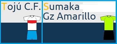 20150417011513-toju-sumaka.jpg